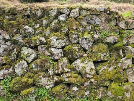 タテマエのテマエ(2)石積みからの手紙