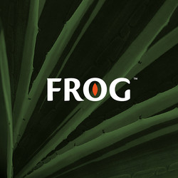 Frog Brand Identity