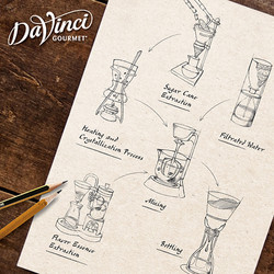 DaVinci Syrup Making Illustrations