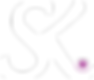 sandraking-logo-white.png
