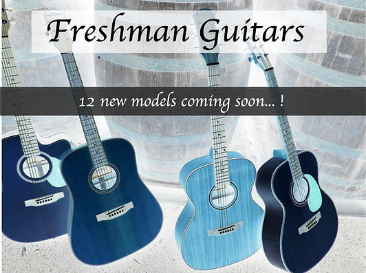 Freshman new guitar models soon.JPG