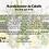 Thumbnail: Acondicionador de Cabello con extracto de Sea Kelp, Chebe, Aloe vera y Hierba