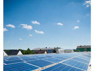10 redenen waarom RINGANA het duurzaamste bedrijf van Oostenrijk is