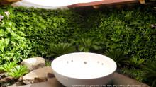 Hoe groen is jouw badkamer?