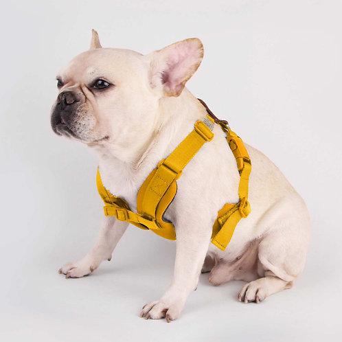 Sputnik: Comfort Dog Harness (Yellow)
