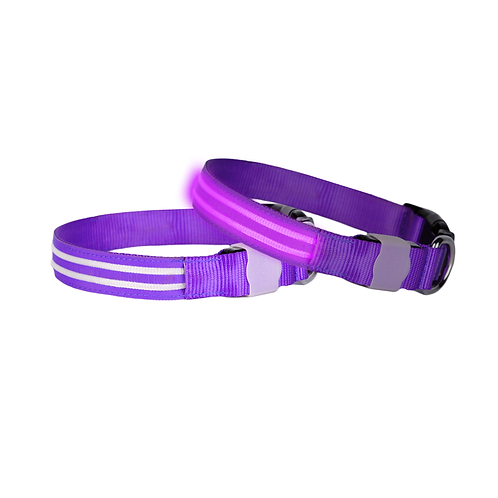 DOGlite LED Collar X-Small (24-36cm) Purple Haze