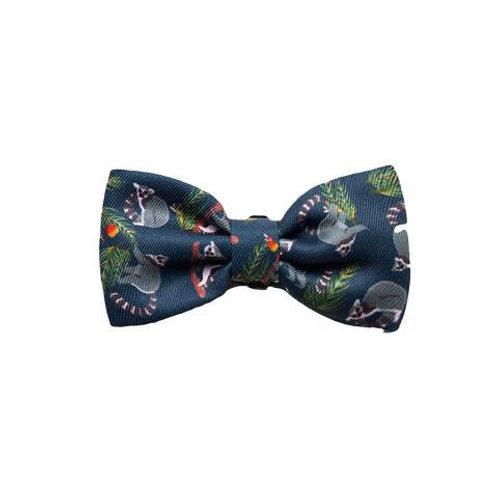 Zee.Dog Bow Tie-Mango