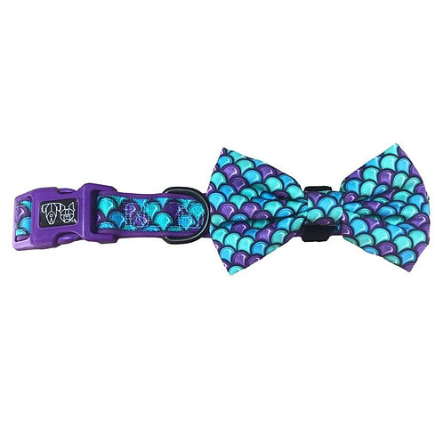 Big & Little Dogs Collar & Bow Tie-Scaled Back