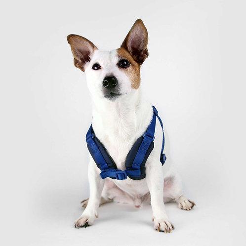 Sputnik: Comfort Dog Harness (Blue)