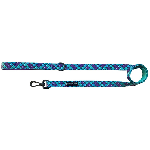 Big & Little Dogs Leash-Scaled back