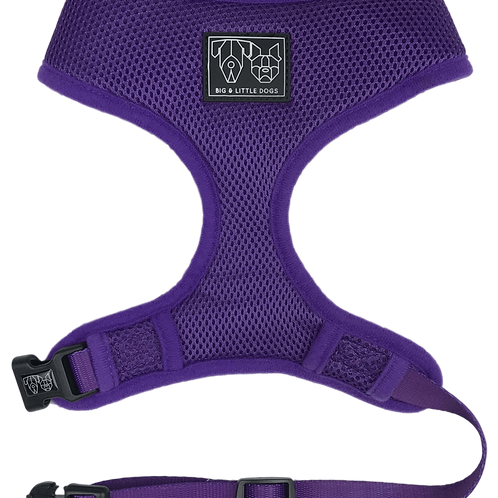 Big & Little Dogs Classic Harness-Purple