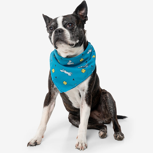 Insect Shield: Ball & Squirrel Bandana in Teal color