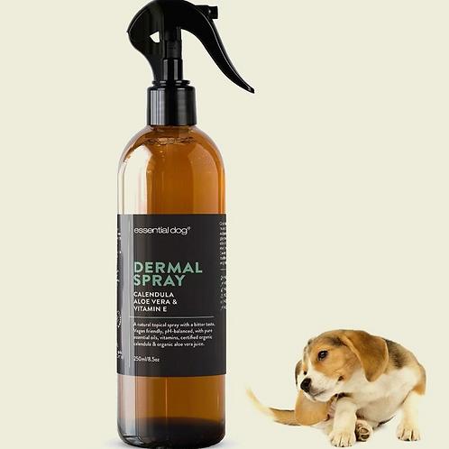 Essential Dog Natural Anti Itch Spray for Dogs: Aloe Vera, Calendula & Vitamin E