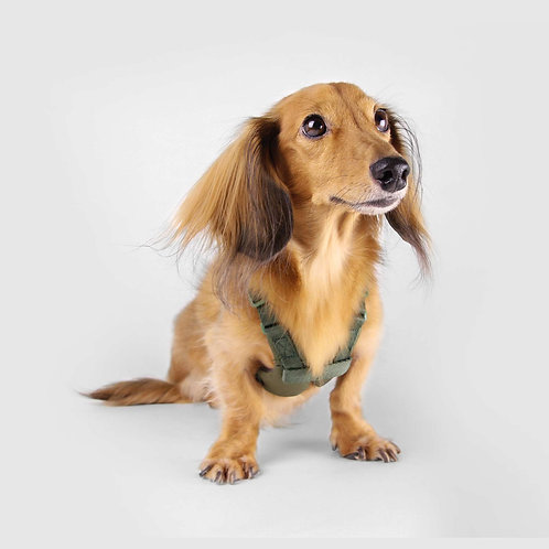 Sputnik: Comfort Dog Harness (Green)
