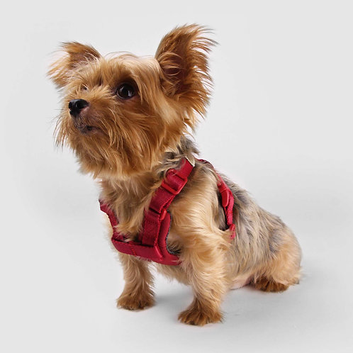 Sputnik: Comfort Dog Harness (Red)