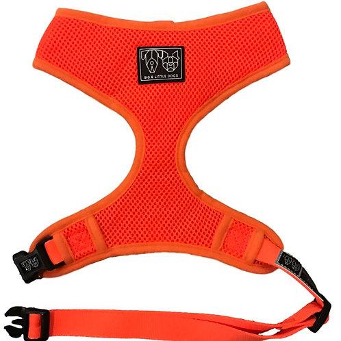 Big & Little Dogs Classic Harness-Orange