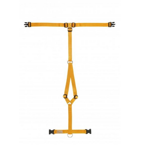 Haqihana Orange Harness