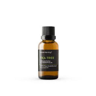 Essential Oil: Tea Tree