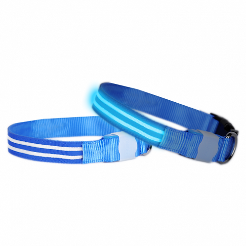 DOGlite LED Collar Medium (38-50cm) Blue Moon