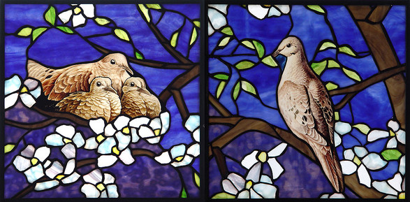 Mourning Doves in Dogwood