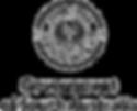 gsa-logo_edited.png