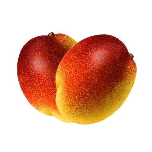 Pulpa de Mango | 500 Gr. | 1 Kg.