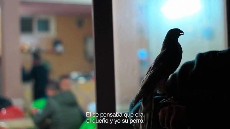 "Barbara-Sanchez-Barroso-""Paradise""-3.jpg"