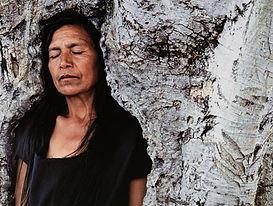 SN_Tooba_woman_in_tree-500.jpg