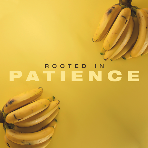 Rooted in Patience