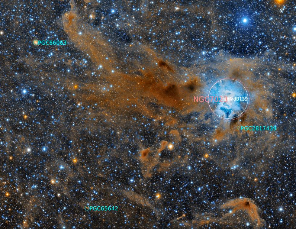 NGC7023 - Iris Nebula (Annotated).jpg