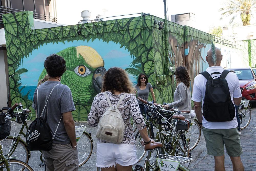 Biking tour looking at parrot mural