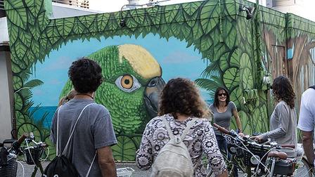 parrot mural bike tour website.jpeg