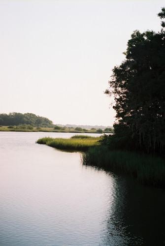 Florida1000013.jpg