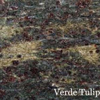 Verde Tulip