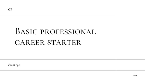 Basic Professional Career Package