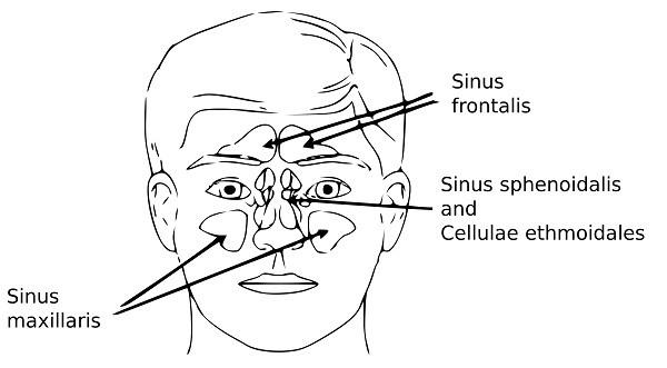 sinus eye pain