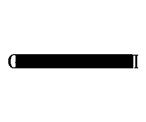 giorgio armani logo 300x250.png