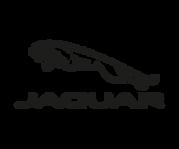 jaguar - black logo 300x250.png