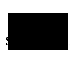 Stepper Eyewear logo