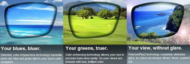 buy sunglasses online