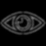 eye-vector_edited.png