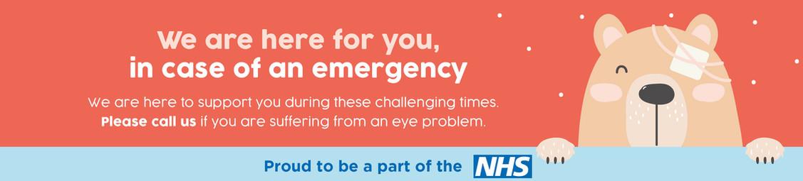 Optika emergency web banner.jpg