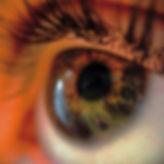detailed eye.jpg