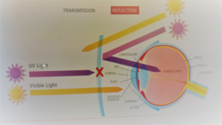 UV Light Diagram