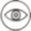 eye-conditions-icon.png