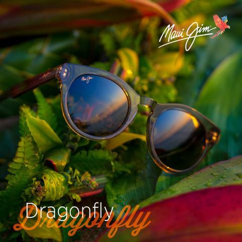 Dragonfly Social Media Post612x612.jpeg