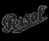 Persol logo 300x250.png