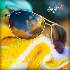 Sea House Social Media Post.jpeg