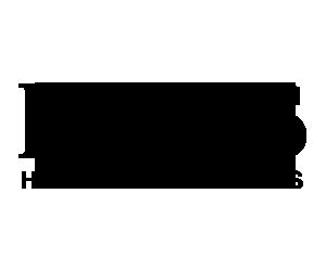 hugo boss logo 300x250.png