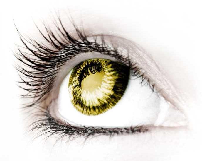 Eyecare Cheltenham